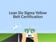lean-six-sigma-yellow-belt-certification