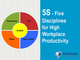 5s-five-disciplines-for-high-workplace-productivity-course