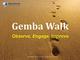 gemba-walk-course