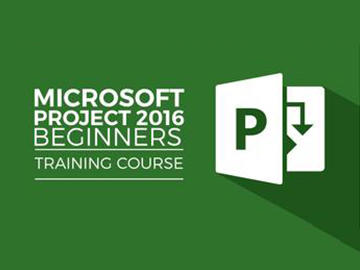 MS Project 2016 - Beginners