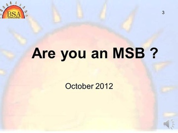 Are You an MSB?  Video