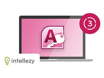 Access 2010 Advanced - Chapter 4:Advanced Form Design output
