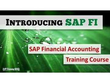 Introduction To SAP Financial Accounting