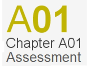 Assessment Chapter A01