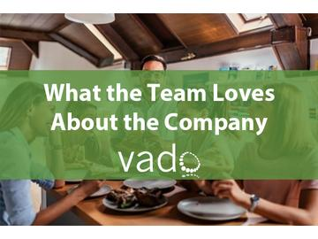 What the Team Loves About the Company