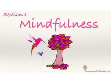 Mindfulness Training Course Section One
