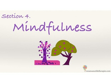 Mindfulness Training Course Section Four