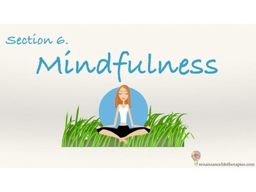 Mindfulness Training Course Section Six