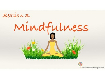 Mindfulness Training Course Section Three