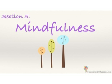 Mindfulness Training Course Section Five