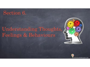 CBT Therapy Course Section Six