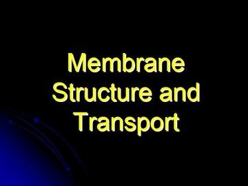 STPM Bio Question 1 - Membrane Structure & Transport