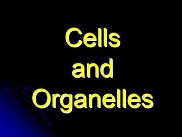 STPM Bio Question 3 - Cells & Organelles
