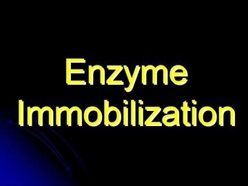 STPM Bio Question 4 - Enzyme Immobilization
