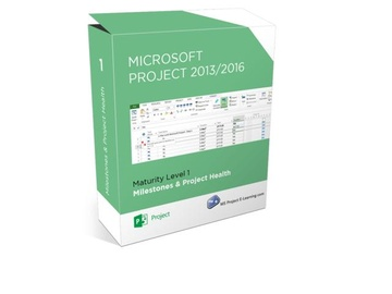 Learn Microsoft Project - Milestones & Project Health - (beginner)