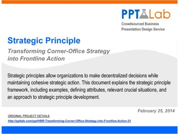 Strategic Principle Framework (Course)