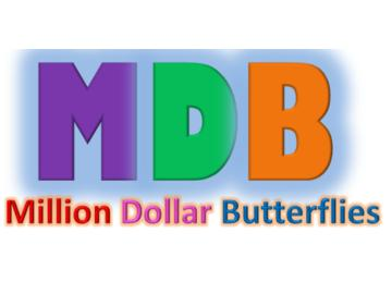 Million Dollar Butterflies: Children in Business
