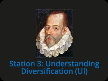 Station 3: Understanding Diversification (UI)
